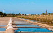 Les marais salants de l'Ile d'Olonne