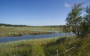 Le marais ornithologique  - Marais-Fosses---Credit-PBeltrami