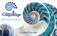 Museum du Coquillage - Museum du Coquillage  Les Sables d'Olonne