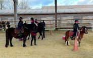 Pôle Equestre Vendéen